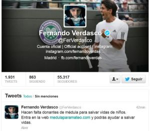 Fernando Verdasco - professional tennis player